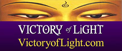 gI 64786 1 Victory of Light logo